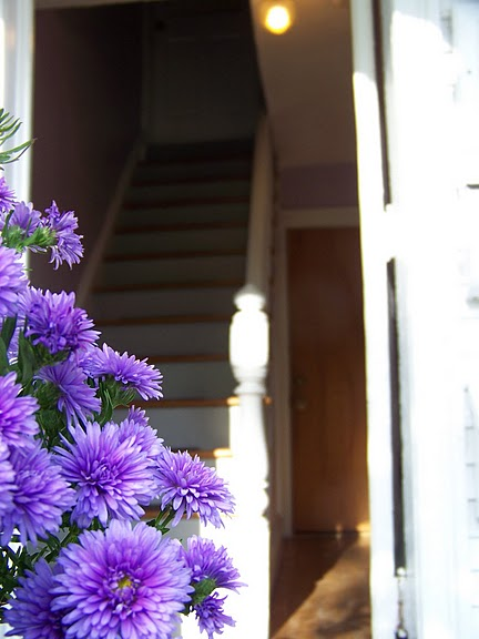 Looking past the porch flowerboxes into the front hallway of the house