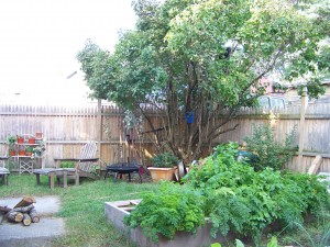 "The backyard has a seating area, a fragrant lilac tree, and two ""square foot gardening"" beds"